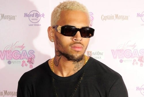 Chris Brown popular male singer 2013