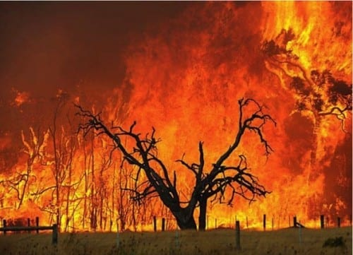 2001 Warragamba Bushfires