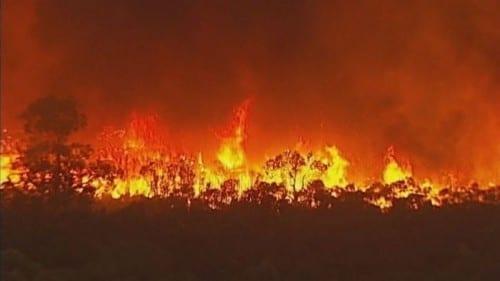 Ash Wednesday bushfires