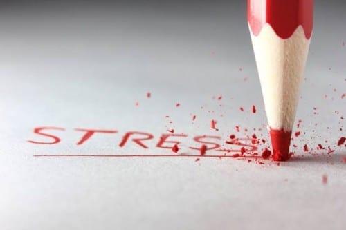 Avoiding Hypertension And Stress