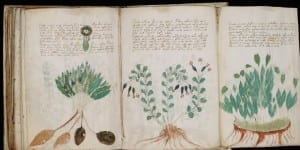Voynich Manuscript , unsolved mystery of the world