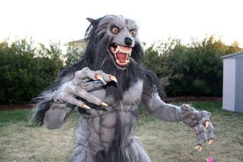 Best Halloween Costume Ideas 2013, Werewolf