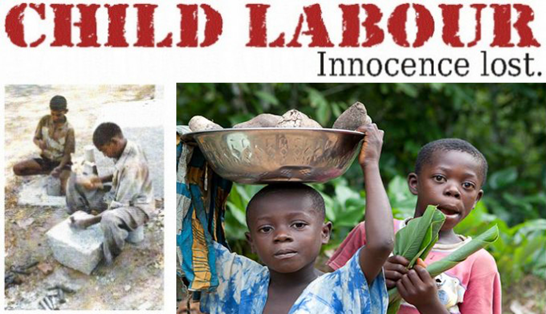 Child labour in developing countries essay