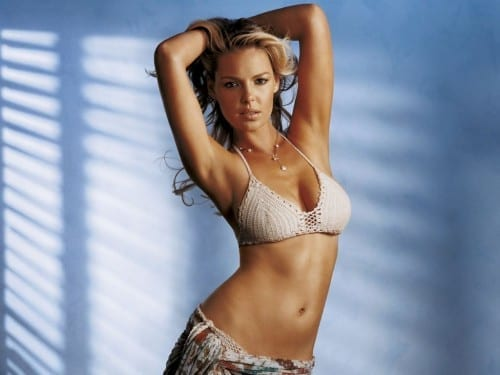 Sexiest Hollywood Actresses In 2014 - Katherine Heigl