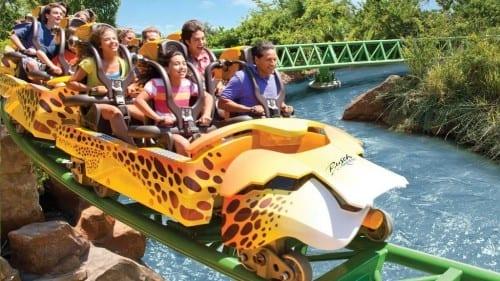MostAmazing Places In Florida - 6. Busch Gardens