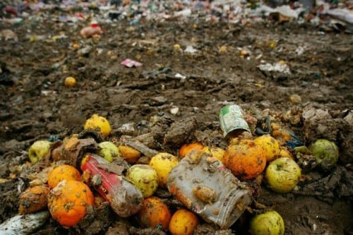 Countries With Highest Rate Of Food Wastage