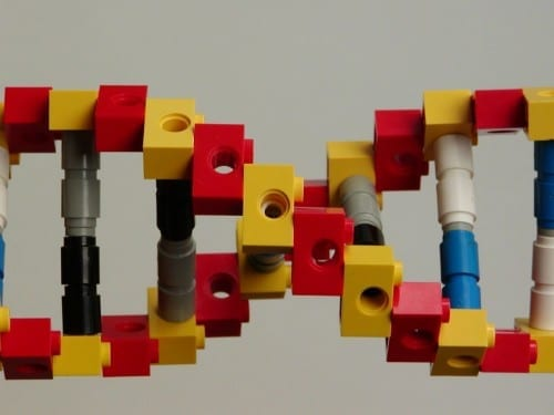 DNA Legos