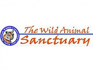 The Wild Animal Sanctuary