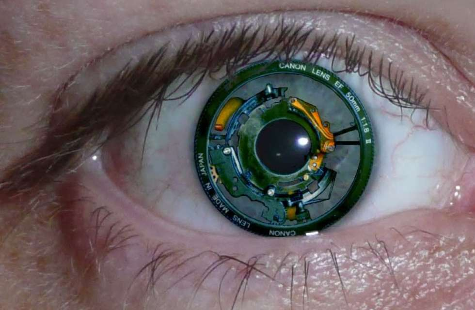 body adapted wearable electronics essay Transparency market research wearable electronics market wearable devices are worn on the body view full essay.