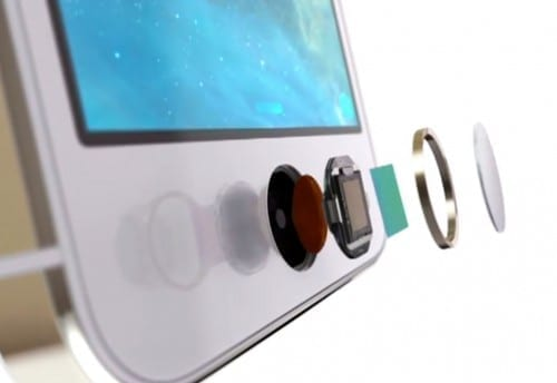Differences Between iPhone 6 And iPhone 6 Plus - Touch ID