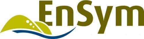 4204 DSE Ensym logo_CMYK