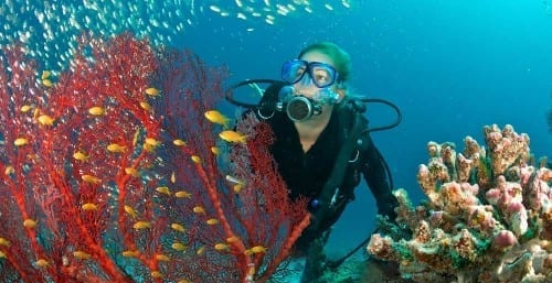 Things You Must Do Before You Die -Scuba Dive